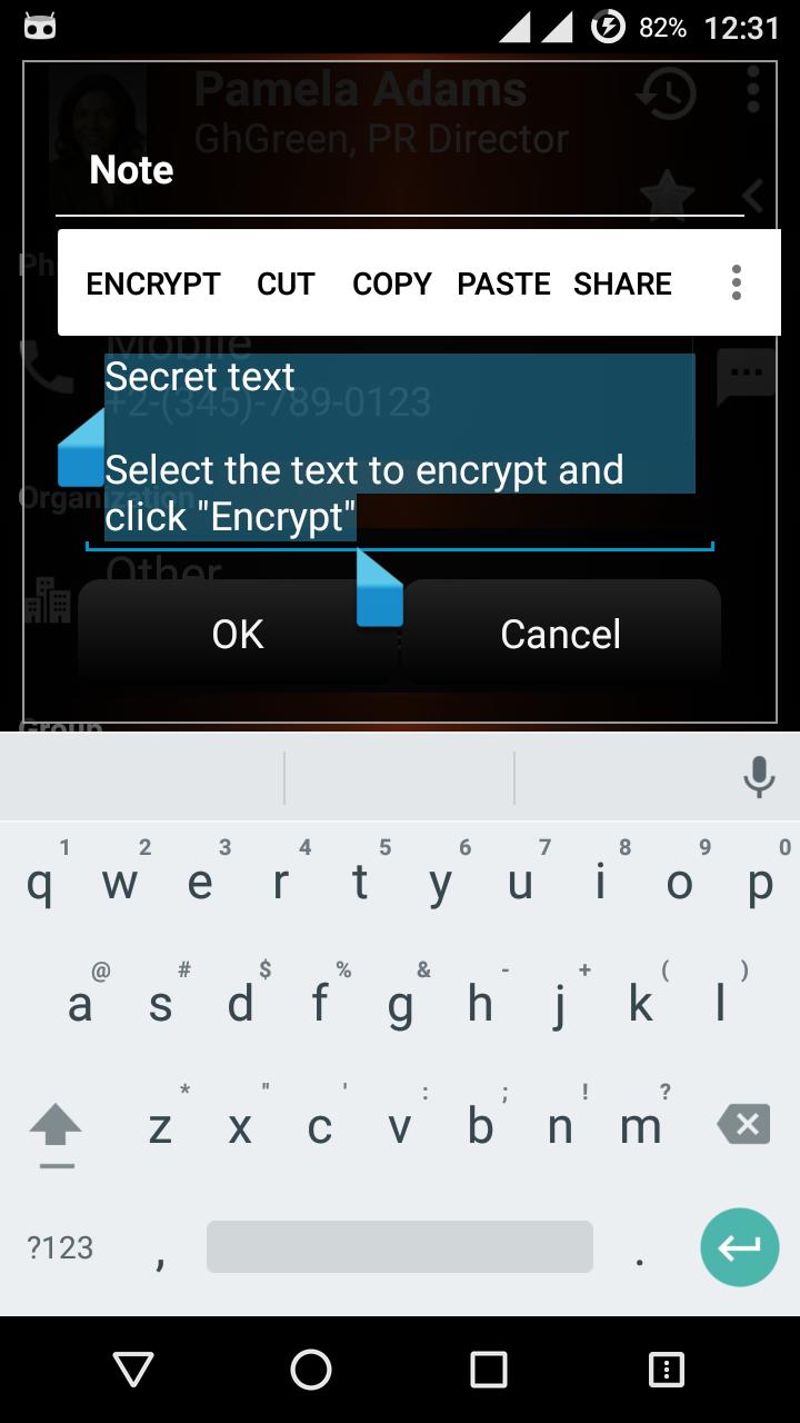 agencrypttext_eng_1